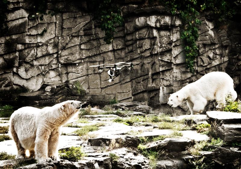 Tierpark Berlin, Friedrichsfelde - Luftaufnahmen